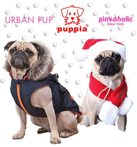 Puppia and Julius K9 UK Soft dog Harnesses