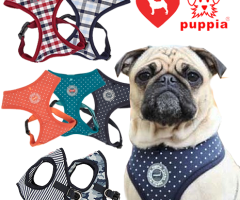 Puppia and Julius K9 UK Soft dog Harnesses