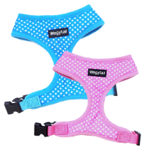 Blue & Pink Dotty Harnesses