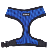 Blue Plain Harness
