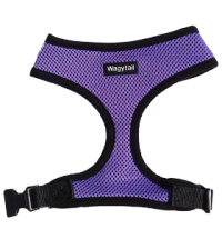 Purple Plain Harness