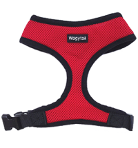 Red Plain Harness
