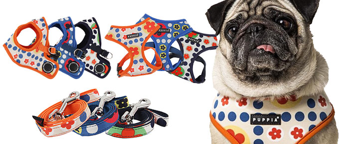 Puppia Soft Harness for your Pug