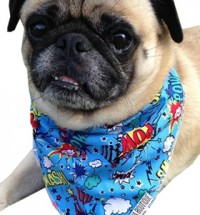 Comic Print Bandana (Boy)