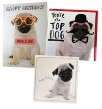 Pug Birthday Card Bundle