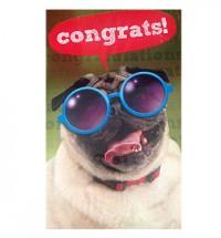 Pug Congratulations Card
