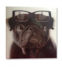 3D Pug with Glasses Card