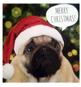 Santa Pug Card I Love Pugs