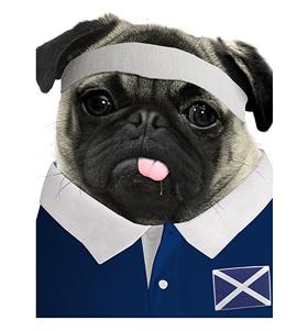 Scotland Rugby Pug T Shirt Adult Unisex I Love Pugs