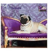 2016 18 Month Pug Calendar