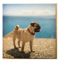 Beach Pug Card
