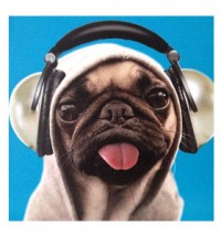 Headphones Blank Pug Card