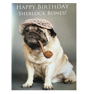 Sherlock bones Happy Birthday Pug Card
