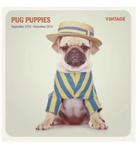 2016 16 Month Pug Puppy Vintage Calendar