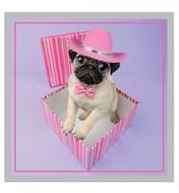 Pink Pug in box Card