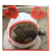 Fawn Pug Wooley Hat Card