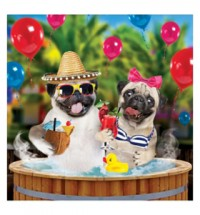 Pool Party Birthday 3D Pug Card