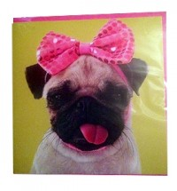 Pug pink bow card