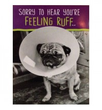 Feeling ruff get well soon Pug Card
