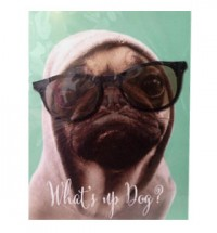 What's up Dog? Pug Birthday Card