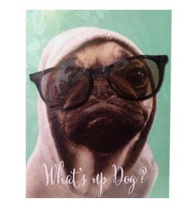 What's up Dog? Pug Birthday Card