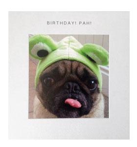 Frog Pug Birthday Card
