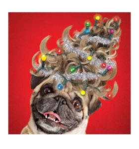 Pug Christmas tree wig card