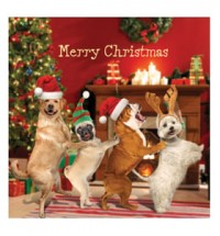 Pug conga Christmas card