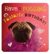 Puggin Pug Birthday Card