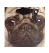 Cute Pug Face Gift Bag