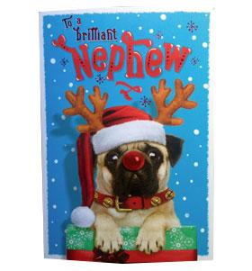 Pug Nephew Christmas Card