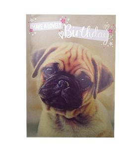 Fawn Pug Birthday Card