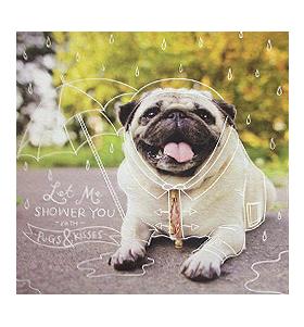 Rain Shower Pug Blank Card