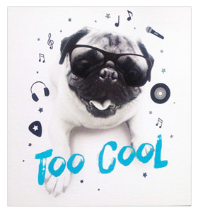 Too Cool Blank Pug Card
