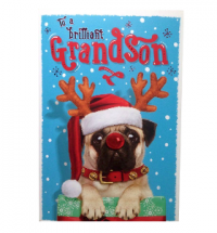 Pug Grandson Christmas Card