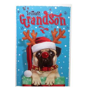 Pug Grandson Christmas Card
