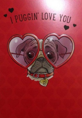 Puggin Love You Valentines Cards