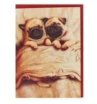 Pug Snuggles Valentines Card