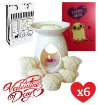 Pug Lovers Valentines Day Offer