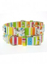 Urban Pup Striped Neon  Collar