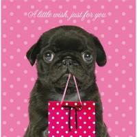 Black Pug Birthday Card