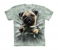 Child's Breakthrough Pug T-Shirt