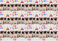 Pug Puppy Birthday Small Gift Wrap Sheet & Tag