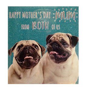 Pug Glittered Mothers Day Card From The Both Of Us