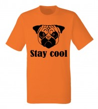 Mens Stay Cool T-Shirt (Available in 4 colours)