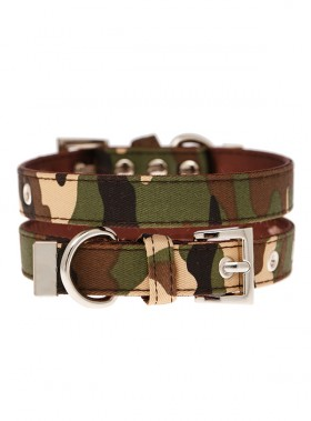 Urban Pup Camo Collar
