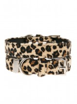 Urban Pup Leopard Print Collar