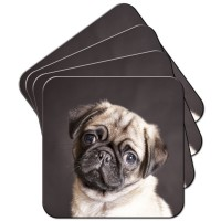 Gorgeous Pug Puppy Coaster Set Of 4