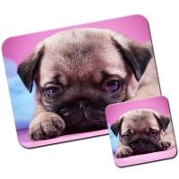 Pug Puppy Mouse Mat & Matching Coaster