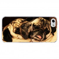 Two Snuggled Pugs Apple Iphone Cover